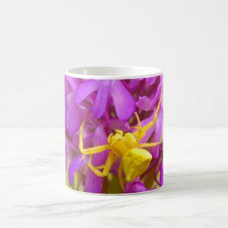 Gelbe Krabben-Spinnen-Wanzen-Tasse Tasse