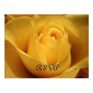 Gelbe Rose, UAWG, S Cyr Postkarte