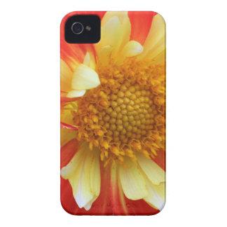 Gelbe und rote Blume mf Case-Mate iPhone 4 Hülle