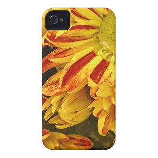 Gelbe und rote Blumen iPhone 4 Case-Mate Hüllen