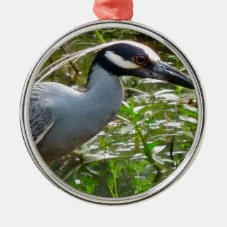 Gelber Kronen-Nachtreiher Silbernes Ornament
