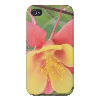 Gelbes und rotes Columbine 4/4s iPhone 4 Hülle