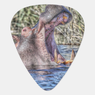 gemaltes Flusspferd Plektron