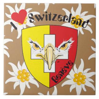 Genf / Genève Schweiz Suisse Svizzera Fliese