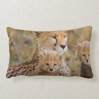 Gepard-Familie Lendenkissen