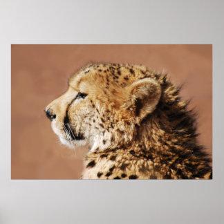 Gepard-Prinz Poster