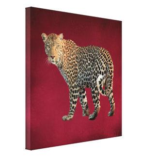 Gepunkteter Leopard-wilde Katzen-Fotografie Gespannte Galeriedrucke