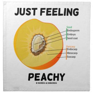 Gerade Gefühl pfirsichfarben Stoffserviette