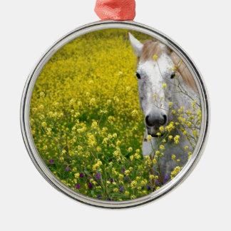 Gerade neugierig rundes silberfarbenes ornament