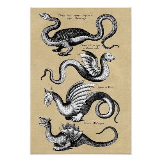 Geschichte des Drache-Wand-Diagramms Poster