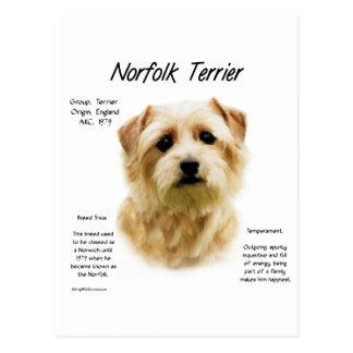 Geschichtsentwurf Norfolks Terrier Postkarte