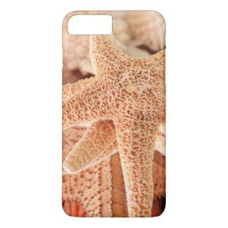 Getrocknete Seesterne verkauft als Andenken 2 iPhone 8 Plus/7 Plus Hülle