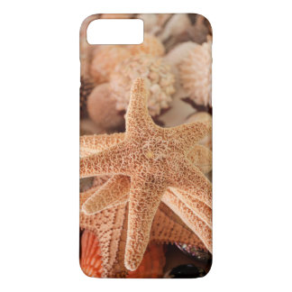 Getrocknete Seesterne verkauft als Andenken iPhone 8 Plus/7 Plus Hülle
