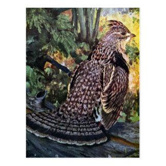 Getrumpftes Waldhuhn im Wald Postkarte