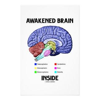 Gewecktes Gehirn-Innere (Gehirn-Anatomie) Büropapier