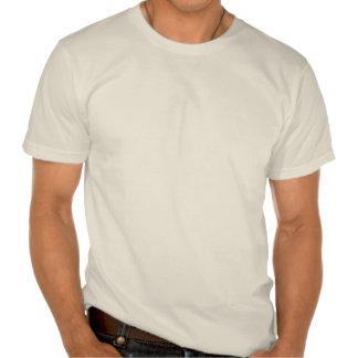 Gewerkschafts-Flagge, ziviler Krieg, Sterne u. Str T Shirt