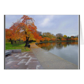 Gezeiten- Pool-Herbstfarben Karte