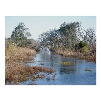 Gezeiten- Sumpfgebiete Buxton NC OBX Postkarte