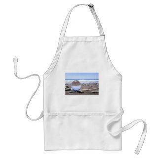 Glasbereich auf Steinen am Strand und an der Küste Schürze
