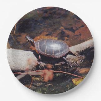 Glückliche Schildkröte Pappteller