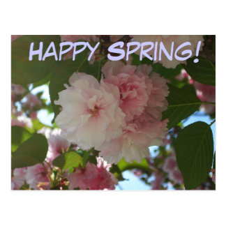 Glücklicher Frühlings-doppelte blühende Postkarte