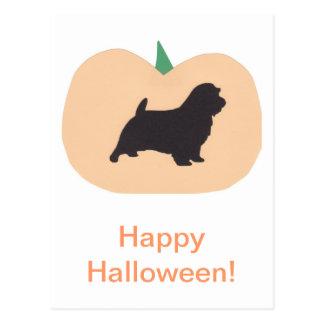 Glücklicher Halloween-Kürbis Norfolk Terrier Postkarte