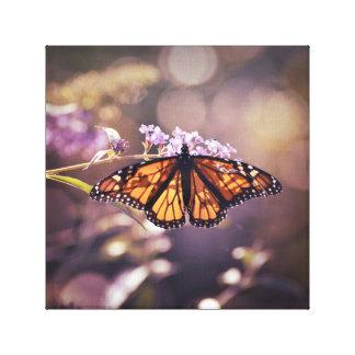 Glühender Monarch-Schmetterling weiches lila Bokeh Leinwanddruck