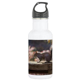 Glühendes Eichhörnchen Trinkflasche