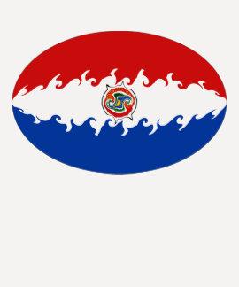 Gnarly Flaggen-T - Shirt Paraguays