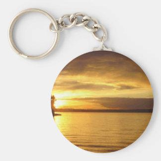 Goldenes Spritzen Keychain Schlüsselanhänger