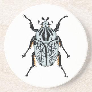 Goliath-Käfer (Single) Sandstein Untersetzer