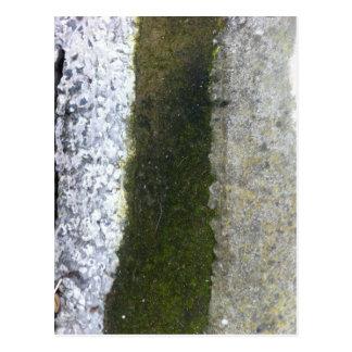 Gosse-Abfall -- Schlamm mit konkreter Gosse Postkarte