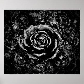 gotische Rose Poster