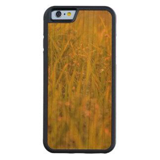 Gras-Detail-Foto Bumper iPhone 6 Hülle Kirsche