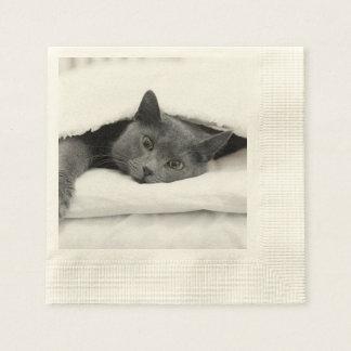 Graue Katze unter weißer Decke Serviette