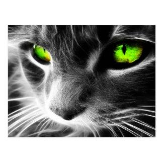 Graue Katzen-grüne Augen Postkarten