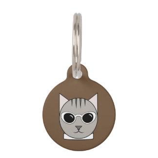 Grauer Tabby im weißen Katze-Auge Tiermarken