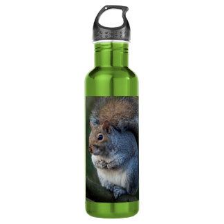 Graues Eichhörnchen Edelstahlflasche