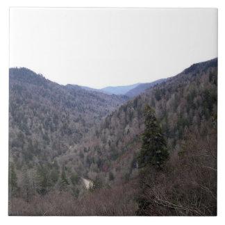 Great Smoky Mountains-Kälte-Tag Große Quadratische Fliese