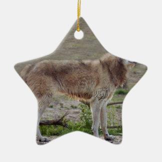 grey-wolf-12 keramik ornament