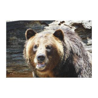 Grizzly-Bär wickelte Leinwand-Druck ein Leinwanddruck