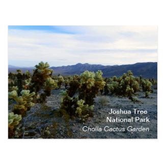 Große Joshua-Baum-Postkarte! Postkarte