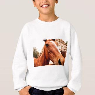 Große Nase Sweatshirt
