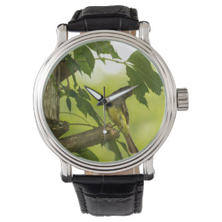 Großer Flycatcher mit Haube Armbanduhr