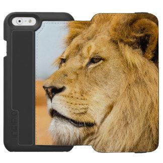 Großer Löwe, der weit weg schaut Incipio Watson™ iPhone 6 Geldbörsen Hülle