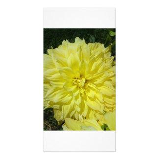 Großes gelbes Dhalia Individuelle Photo Karten