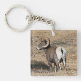 Großes Horn-RAM addieren Foto-Acryl Keychain Schlüsselanhänger