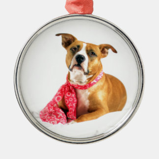 Gruben-Stier-Welpen-Liebe in rosa XOXO Silbernes Ornament