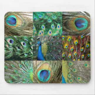 Grün-blaue Pfau-Fotocollage Mousepad