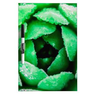 Grün Memoboard